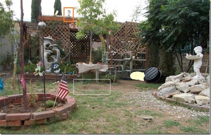 UFO backyard